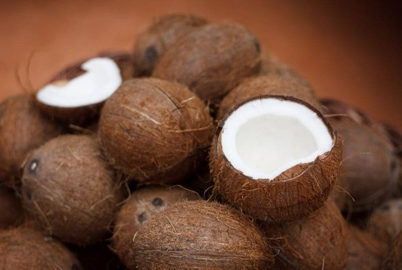 What Is Eco Coco Coir Good For?