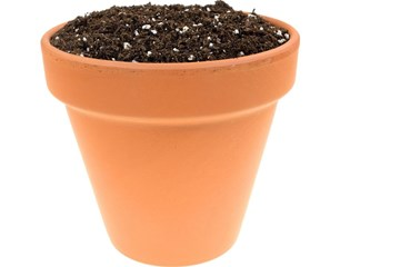 The Myth of Drainage Material in Container Plantings