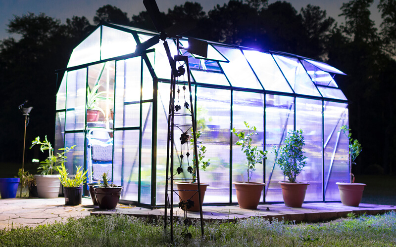 Lights on inside a greenhouse at night.