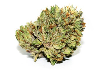 Strain Review: Death Star