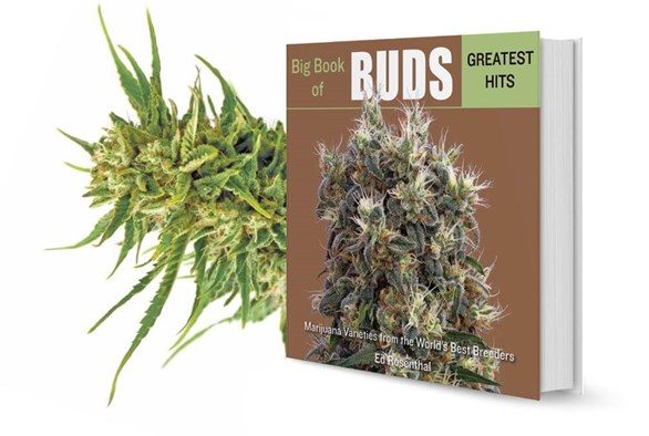 A Sample from Ed Rosenthal's Big Book Of Buds Greatest Hits