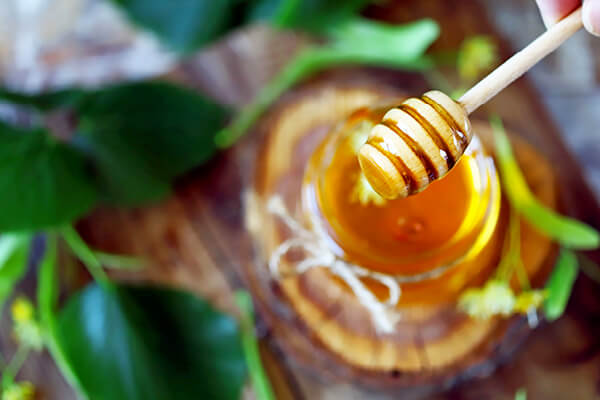 Honey can be used as a natural rooting stimulant