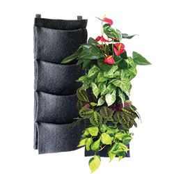 Florafelt Vertical Gardens and Living Walls