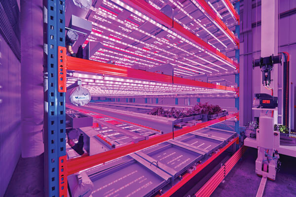 Vertical farms by Urban Crop Solutions in Kortrijk, Belgium are off the shelf plant factories gardened by robots using a crate system