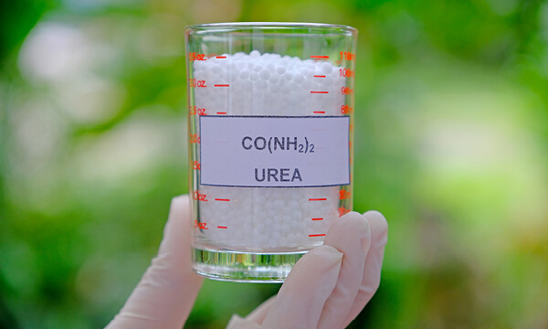 Urea for substrate and fertilizer in agriculture