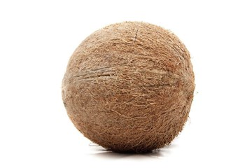 The Chemistry of Coco Coir