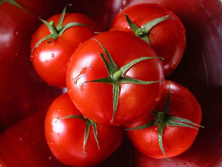 Blushing Tomatoes: What Makes Tomatoes Turn Red