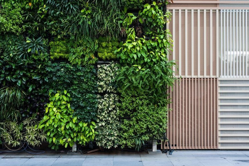 Phytoremediation and Greenwalls: The Next Revolution in Interior Plantscaping