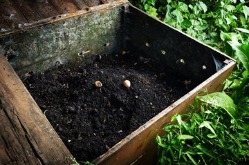 Backyard Composting Made Easy