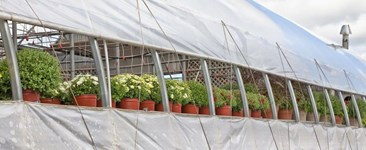 Seasonal Grow Tips for the Modern Grower