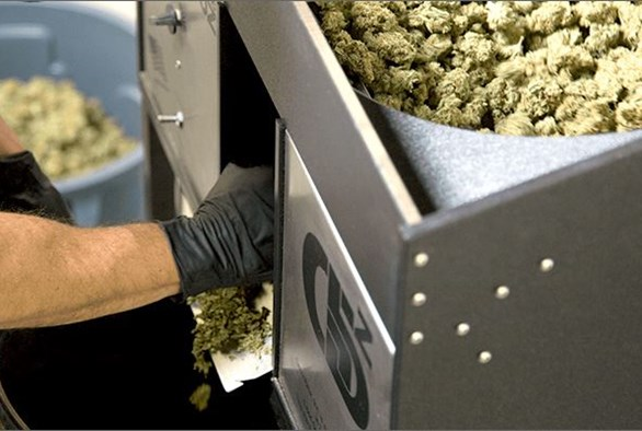 Trim Buds Faster Without Sacrificing Quality With This New Cannabis Trimmer