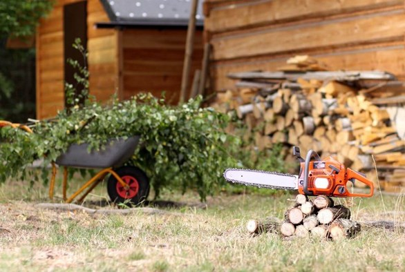 Grooming Your Garden for Fall
