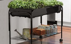 How can I reduce the cost of starting an indoor garden?