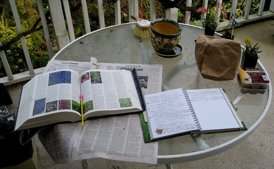 Why You Should Keep a Plant Journal