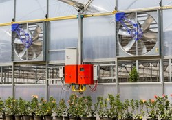 How to Maintain Growroom Air Quality with Air Purification Devices