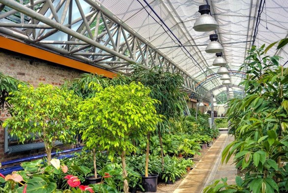 The Pros and Cons of the Different Types of Grow Lights Available For Indoor Agriculture