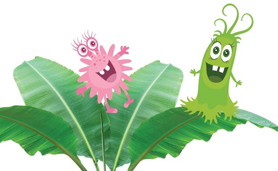 How to Use Beneficial Bacteria for Pest and Disease Control in the Grow Room