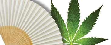 6 Myths About Cooling Your Cannabis Grow Room