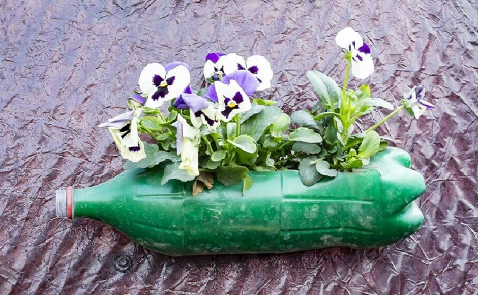 Use It, Don't Lose It: Common Household Items for a Greener Garden