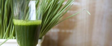 The Wonders of Wheatgrass