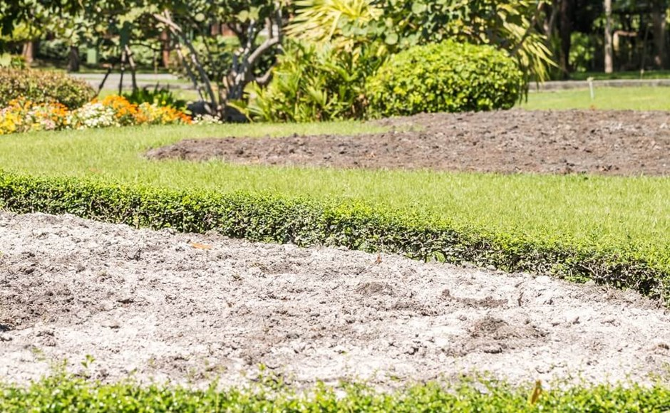 5 Reasons to Add Calcium Carbonate to Your Garden