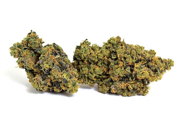 Cut & Dried Strain Review: Broken Coast Cannabis Sour OG