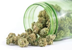 Dry vs. Dried Out: How to Keep Your Buds Fresh