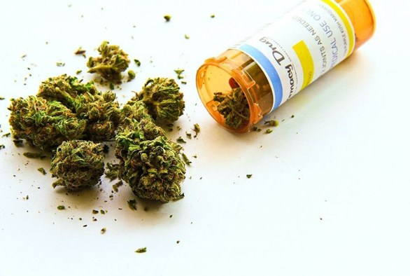 Three Medical Marijuana Strains to Help You Get You Through Anything
