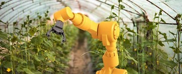 The Future of Human Civilization Relies on Automatic Food Production