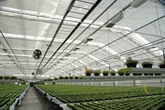 Essential Components for Starting an Indoor Garden