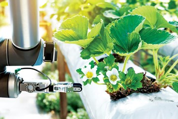 Top High-Tech Tools for Growrooms