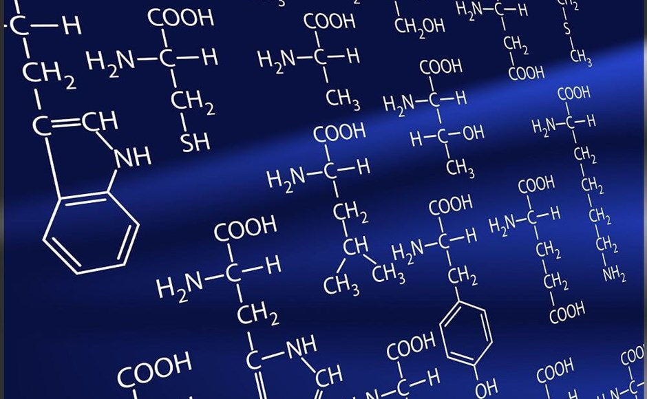 Amino Acid Chelates: Giving Your Plants a Helping Hand