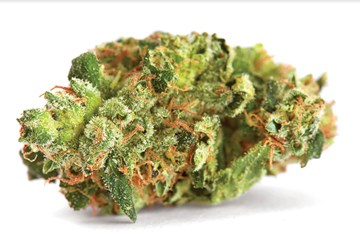 Cannabis Strain Review: Headband