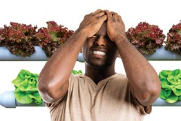 The Top 7 Mistakes Made By Hydroponic Growers