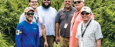 Los Suenos Farms Provide Insights Into Legal Cannabis and Industrial Agriculture