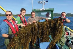 Why Symbiotic Relationships in Aquaculture Are So Important