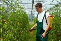 What Not To Do When Applying Fertilizers
