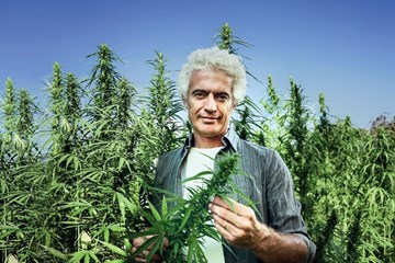 The Hemp Revival: Why the World is Seeing More Hemp-based Products on the Market