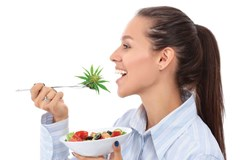The Benefits of Eating Raw Cannabis