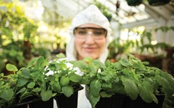 5 New Year's Resolutions for Indoor Growers