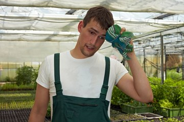 How to Cool Your Greenhouse: Be a Master of Heat Transfer