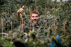What's in Your Growroom? Behind the Scenes with Jonathan Nielson