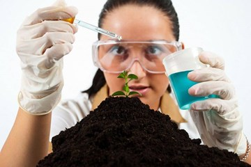 Soil Testing: Give Your Ground a Surprise Pop Quiz