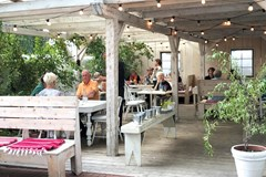 Farm to Table: Culinary Delights in Northern New Mexico
