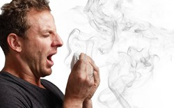 Can a Person be Allergic to Marijuana? Cannabis and Allergies: What You Need to Know