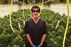 Licensed Marijuana Producer: Broken Coast Cannabis