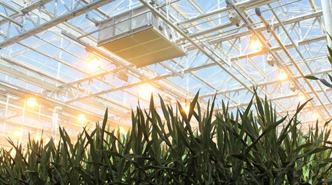With state-of-the-art technology and a seven-acre greenhouse grand opening in Arizona, Bayer is upping the ante when it comes to...