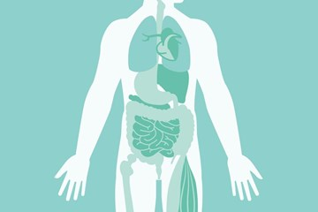 Cannabinoid Hyperemesis Syndrome: It Might be Time for a Detox