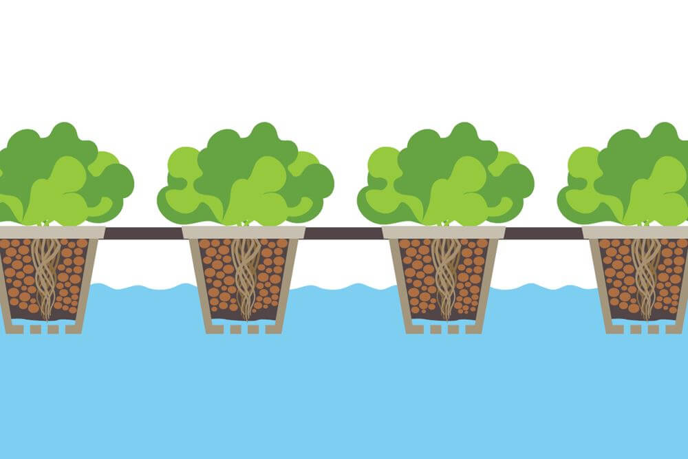 Balancing growth in the garden the 6 most common types of hydroponic systems found in modern grow rooms ccuart Image collections