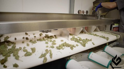 Long gone the days of sorting cannabis flowers by hand! By using a trimming machine, you can gain even more each month by maximizing...